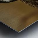 Shine Little Bird  Stilt  Metal print