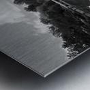 Black White Pond Metal print