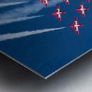 Snow Birds in Flight Metal print