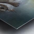 Semipalmated Plover Metal print