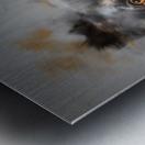 Chien Metal print