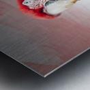 Perroquet  Metal print