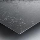 zebre 2 Metal print