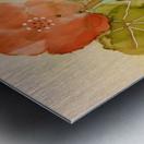 Orange Nasturiums Metal print