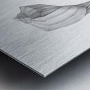 TRANSFORM Metal print