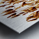 IMG_2852 2 Metal print