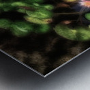 Lillypad Metal print