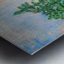 manali Metal print