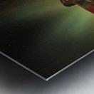 Goldherer Metal print