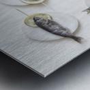 Still Life with Fish Metal print