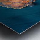spin turtle Metal print