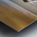 Botallack in 40 seconds Metal print