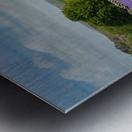 Emsworthy bluebells Metal print