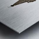 Modena 3 Metal print