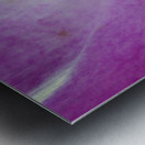 purpletongue2 Metal print