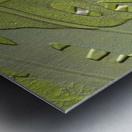Leaf Texture Background Metal print