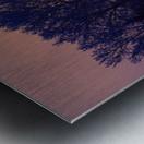 Sun Peeking Through Some Trees Metal print