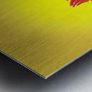 Crowing rooster;British columbia canada Metal print
