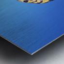 Forest cobra (naja melanoleuca) against a blue background;British columbia canada Metal print