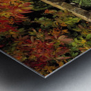 Balustrades & Autumn Colours, Castlewellan, Co Down, Ireland Metal print