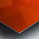 Waterloo, Quebec, Canada; Close-Up Of Red Begonia Metal print