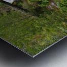 Full view of Sullivan Falls in the Opal Creek Wilderness, Oregon Metal print