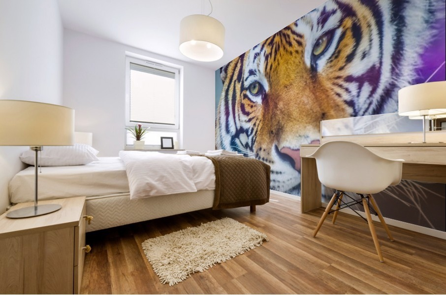 Portrait of Bengal Tiger (panthera tigris tigris) endangered species, captive; Chippewa Falls, Wisconsin, United States of America Mural print