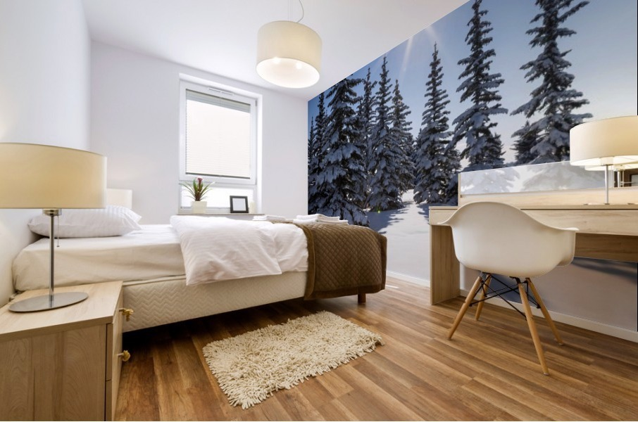Snow covered evergreen trees on a snow covered hillside with blue sky and sun burst; Calgary, Alberta, Canada Mural print