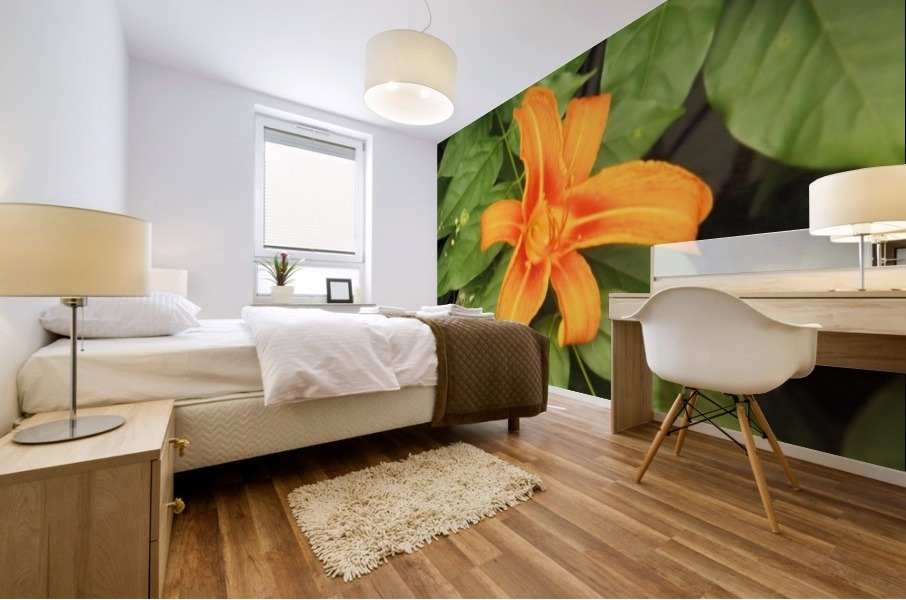 Orange Lilly 1 Mural print