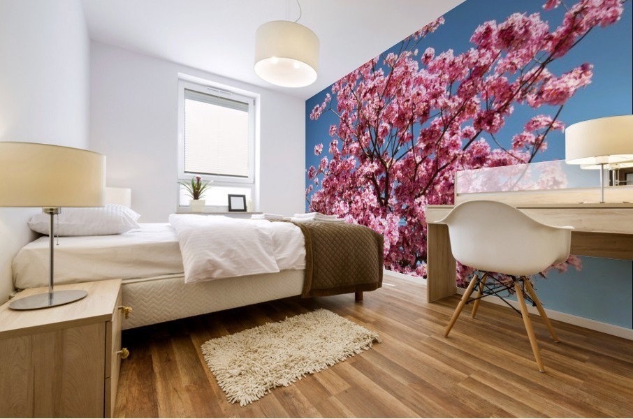 Cherry Blossom on Blue Mural print