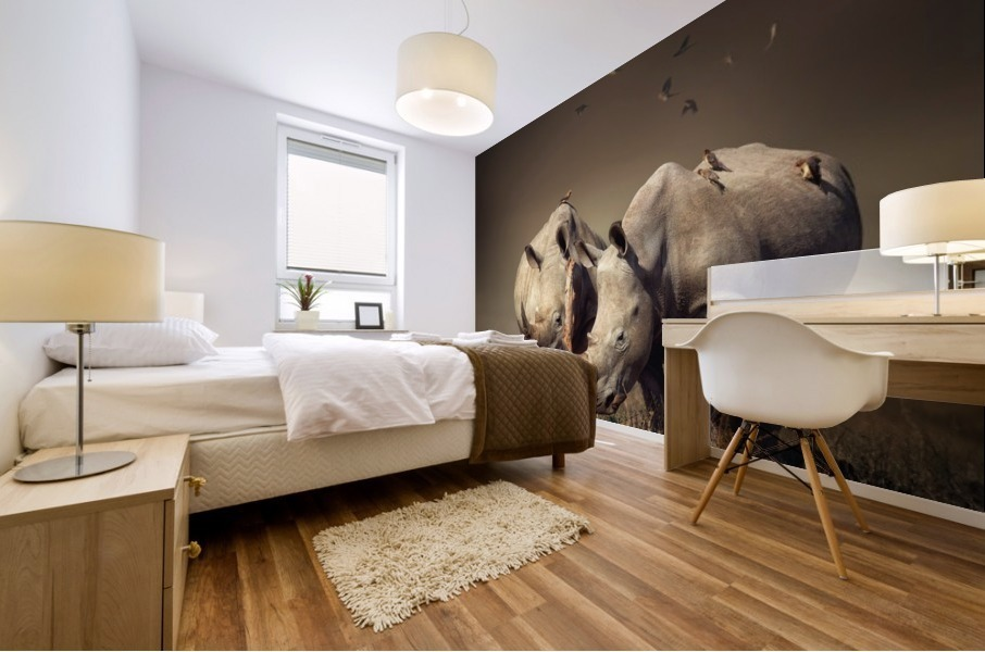 Two Rhinoceros with birds Mural print
