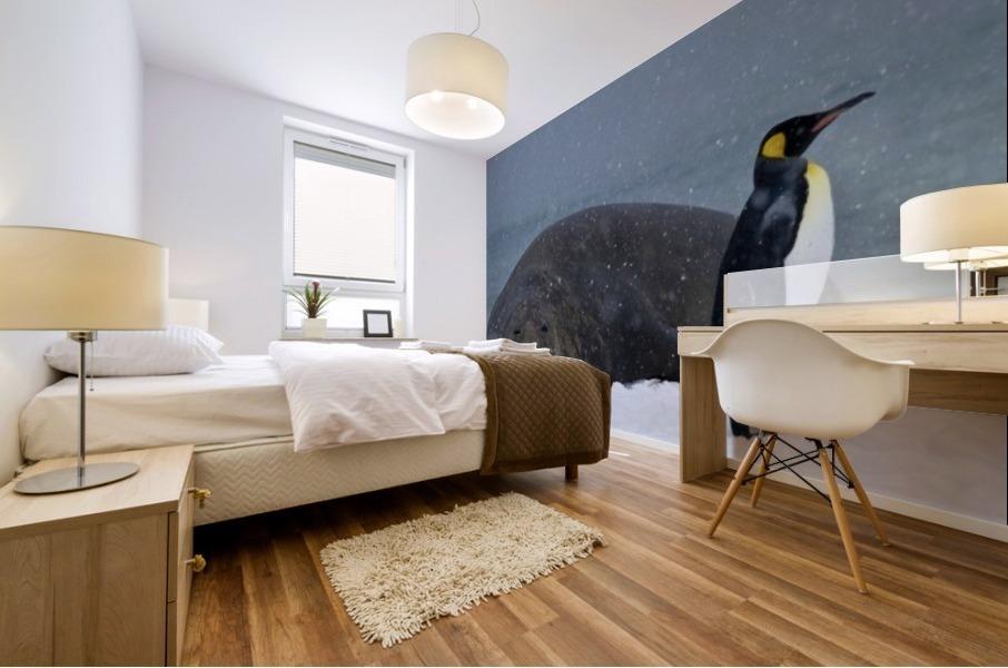 King Penguin walking nest to Elephant Seal Mural print