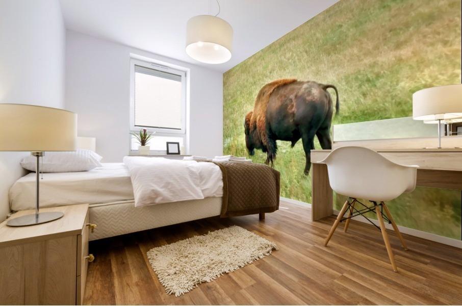 Lone Buffalo Custer State Park Mural print