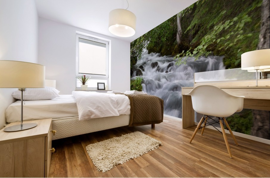Beautiful Waterfall Photograph Mural print