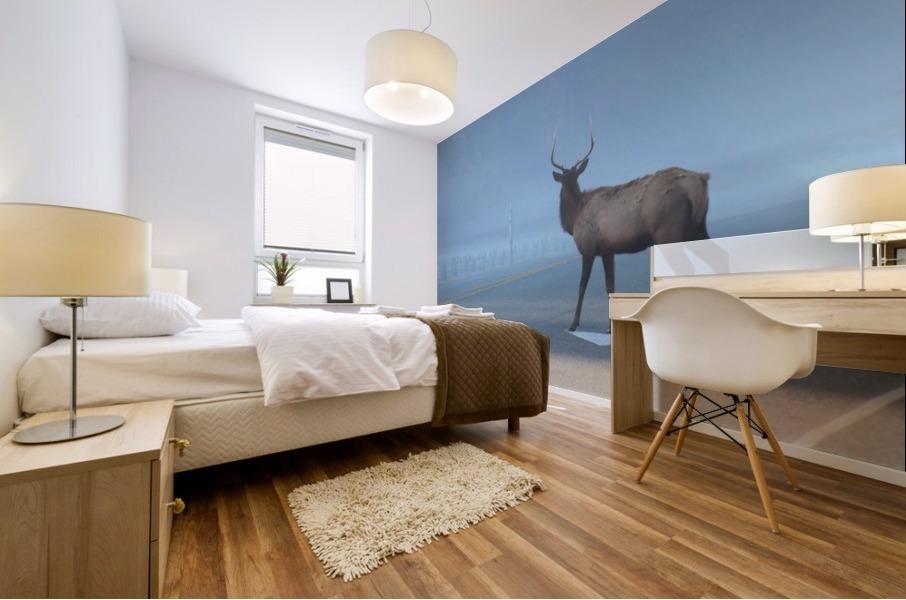 Elk Crossing Mural print