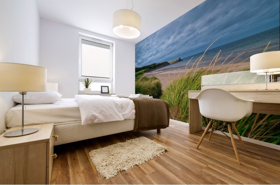 Sand and Grass Mural print
