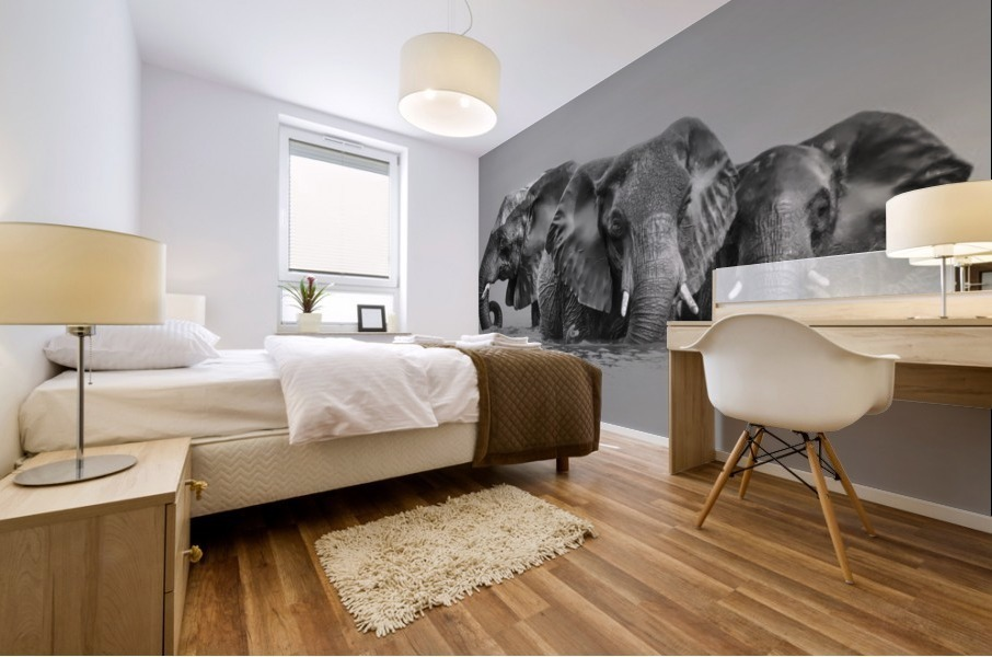 Elephant Crossing The River Mural print