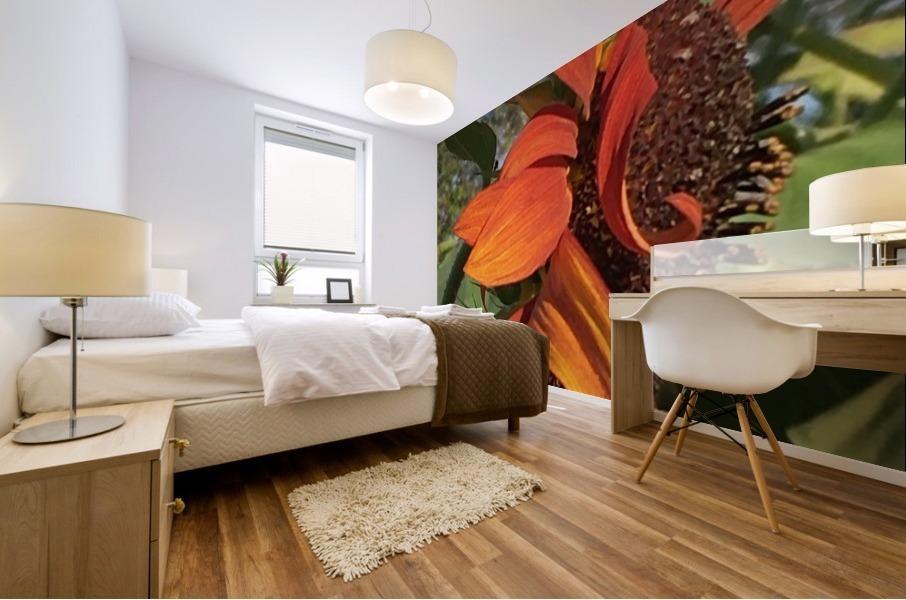 Sunflower seeds  Impression murale
