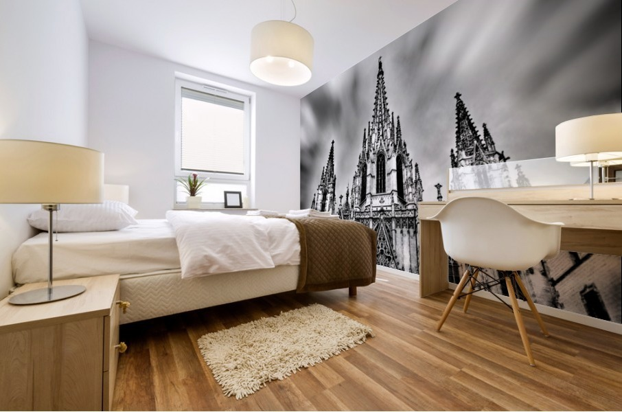 Barcelona Cathedral Mural print