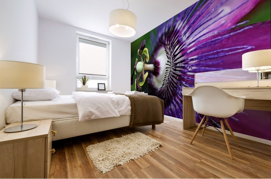 Passion Flower In Purple Mural print