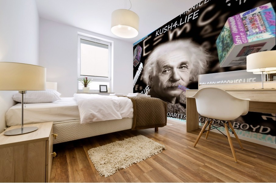 E=MC2=420  Mural print
