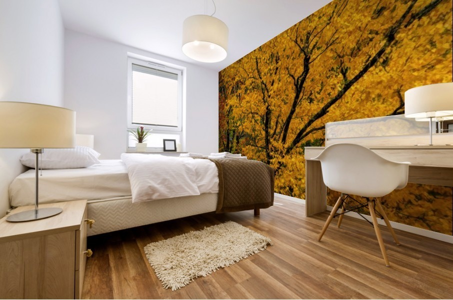 Yellow Tree Leaves Mural print