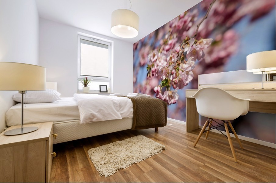 Cherry blossom Red Mural print
