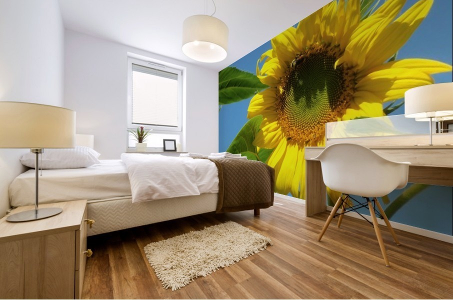 Sunflower Mural print