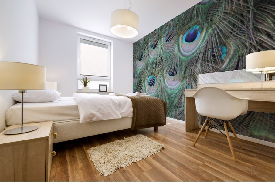peacock feather pattern plumage Mural print