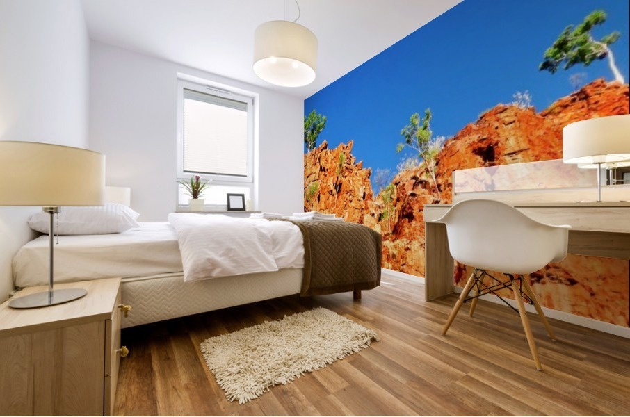 Skyline - Ormiston Gorge Mural print