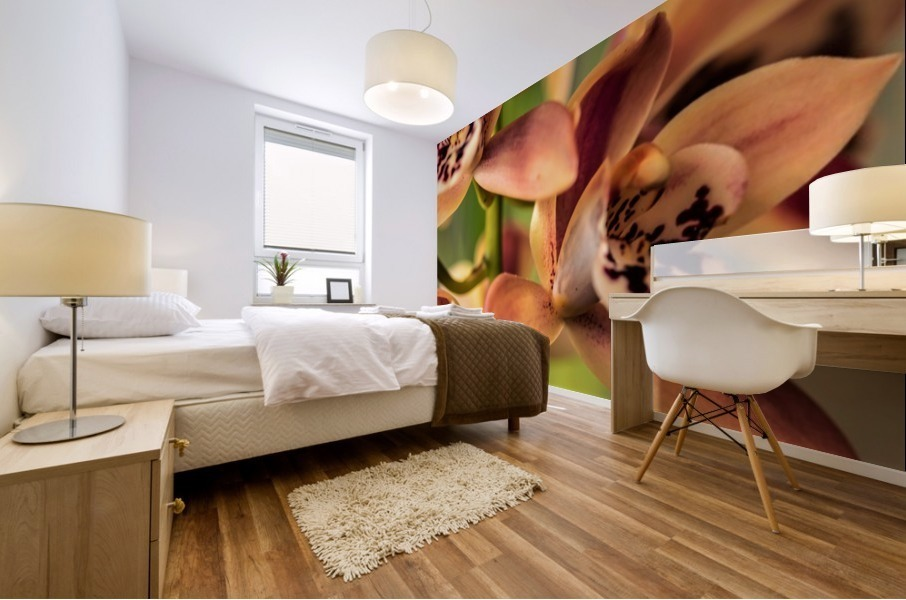 Blush Orchids Mural print
