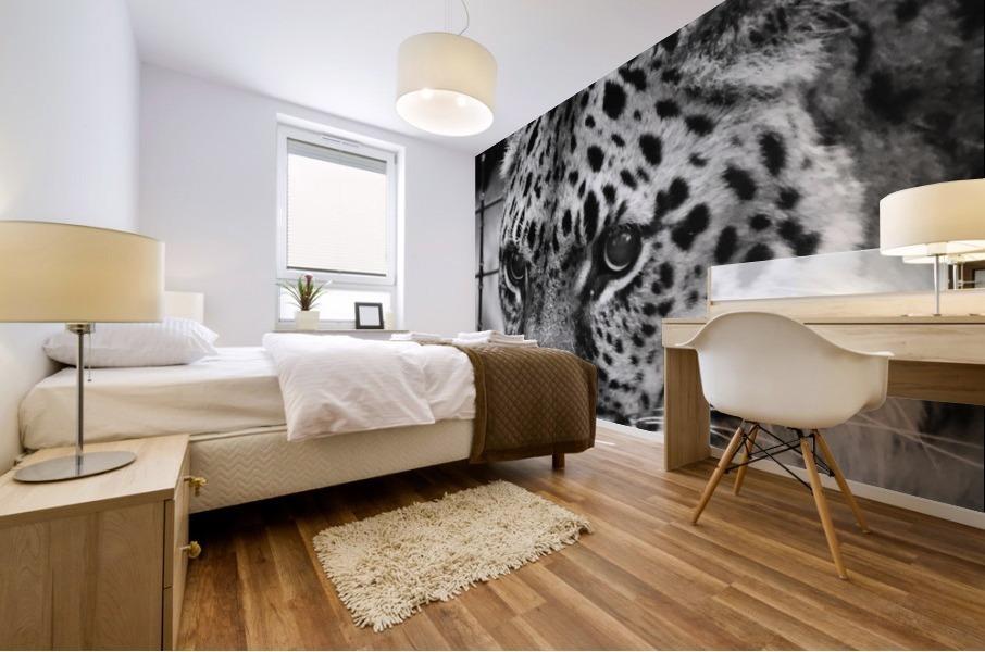 Leopard in Black & White Mural print