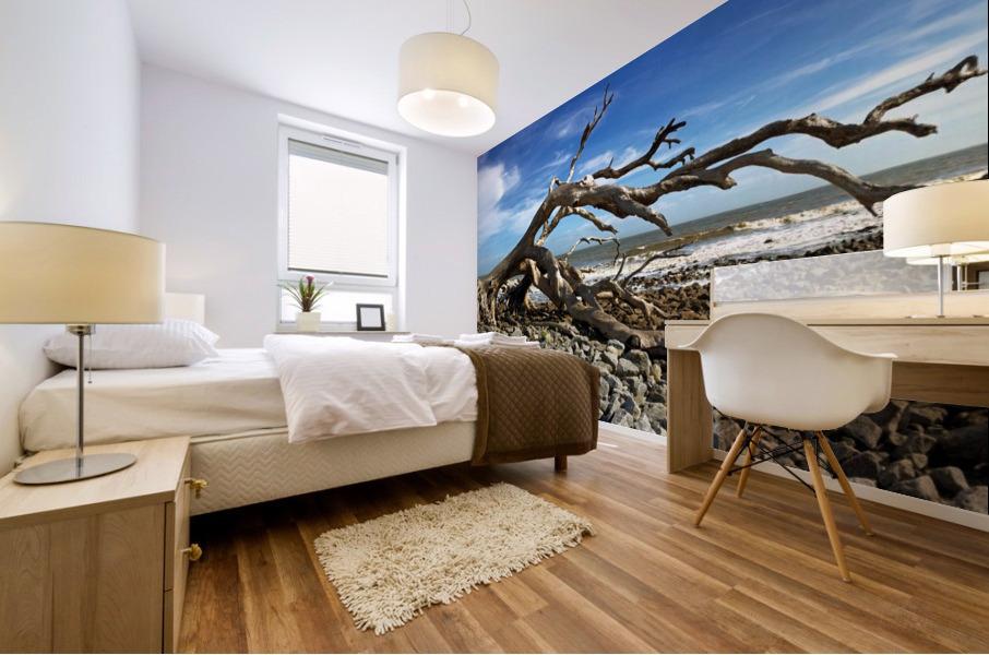 Driftwood Beach Panorama 101 Mural print