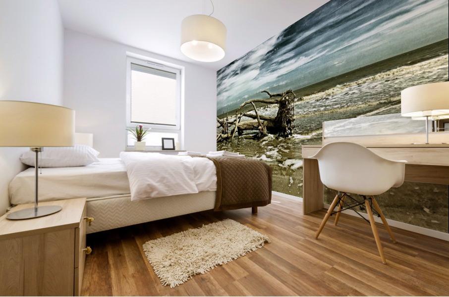Driftwood Beach Panorama 103 Blackgold Mural print